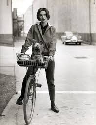 "An anorak, some skinny pants, a sweet ride and a dog are easy ways to tell people ""hey!  I'm laid back and fun, but look dang good too!"".  You can like dressing down as much as dressing up, just keep it simple and classic.  And keep your dog from jumping out of the basket."