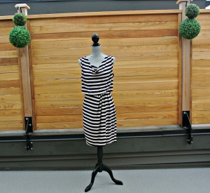 sc stripe dress